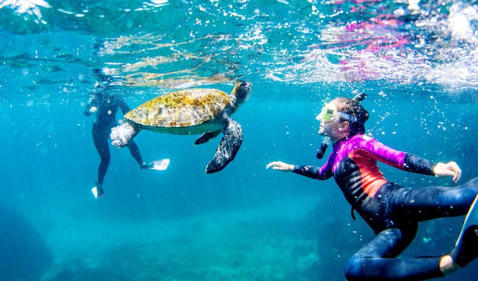 Snorkeling in Eilat
